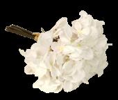 28cm White Hydrangea Posy