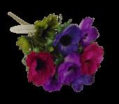 Anemone Bush Purple/Cerise/Plum