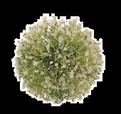 17cm Gypsophila Pomander White