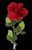 115cm Red Large Rose Stem