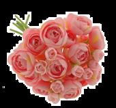 28cm Ranunculus Bundle Pink