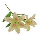 46cm Tiger Lily Spray Light Green