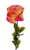 "30"" Rose Stem Pink"