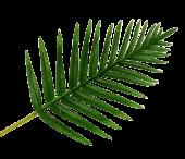 Real Touch Fern Palm Leaf Green 65cm