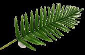Real Touch Fern Palm Leaf Green 108cm