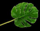 Real Touch Split Philo Leaf 51cm