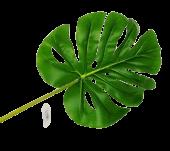 Real Touch Split Philo Leaf 84cm