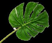 Real Touch Split Philo Leaf 105cm