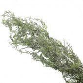 130cm Cedar Garland Frosted Green