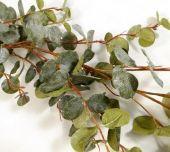 160cm Eucalyptus Garland Green