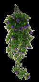 Mini Rose Trailing Bush 65cm UV Protected