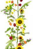 Sunflower Garland - 180cm