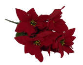 Velvet Pointsettia Bush x 7 Heads Red