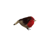 Fat Robins x 6pcs App 12cm