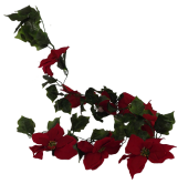 Large Headed Pointsettia Garland Red 182cm