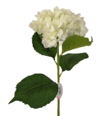 Single Hydrangea 82cm White