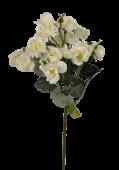51cm Wild Rose Spray Cream