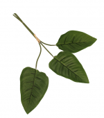 60cm Strelitzia Leaf Bundle