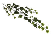 80cm Blush Ivy Spray Weather Resistant