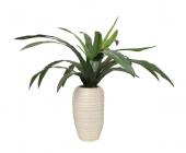 82cm Dracaena Plant In Ceramic Pot Green