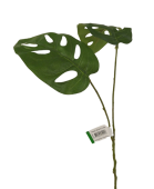 Monkey Leaf Spray 50cm