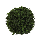 Boxwood Ball D - 15cm
