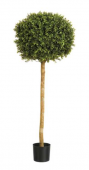 "4"" Boxwood Ball Tree W/1,728 Leaves"
