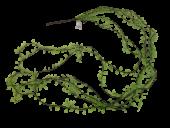 130cm Trailing Vine Leaf