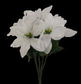 Pointsettia Bush White (7 Heads)