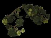 180cm Hop Garland Green