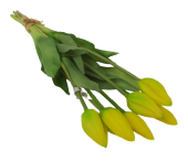 Real Feel Tulip Bunch Yellow