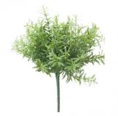 Rosemary Bush Lt Green 22cm