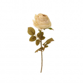 68cm Dried Look Rose Bud Single Cream