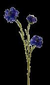 62cm Cornflower Blue
