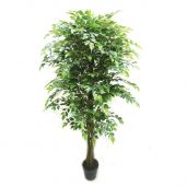 Real Touch Potted Ficus Green 180cm