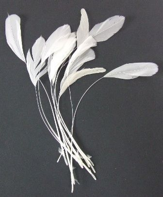 Diamond Feather x 12 Ivory