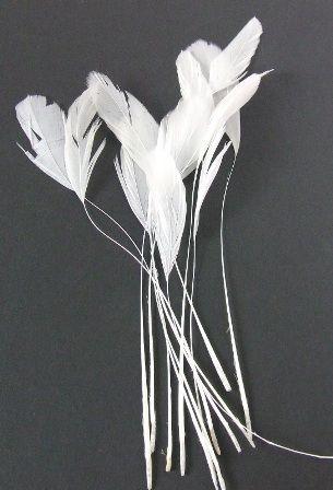 Diamond Feather x 12 White