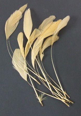 Diamond Feathers x 12 Beige