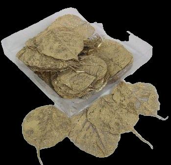Skeleton Leaves Bleached Gold x 200