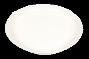 11inch White acrylic dish