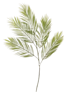 Areca Palm Branch 98cm