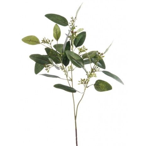 Eucalyptus Spray 60cm