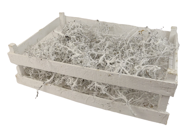 Bonsai Wood White - Crate