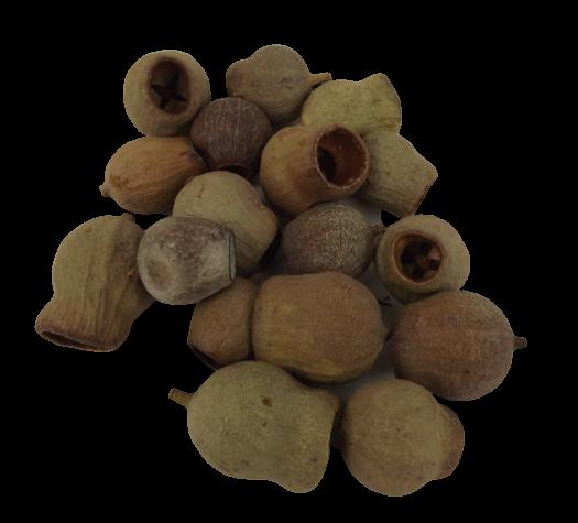 Euc Bells Natural x 1kg