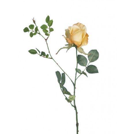 Alice Rose 70cm Lemon