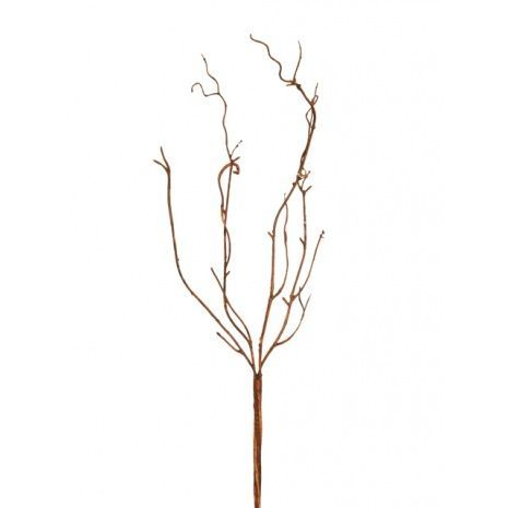 Cinerea Vine Brown 51cm