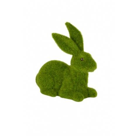 Crawling Rabbit Moss