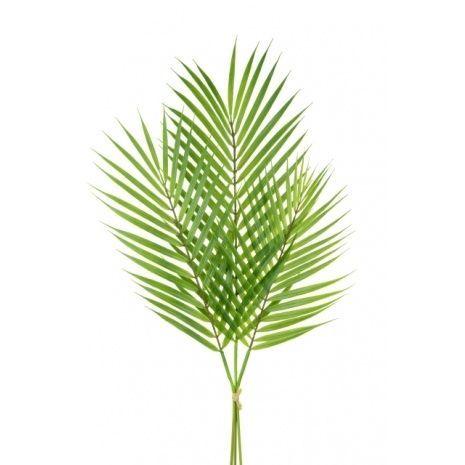 Areca Palm Bundle Green 78cm