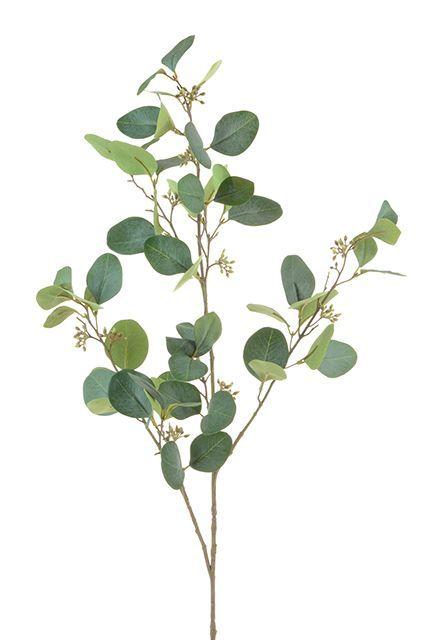 Eucalyptus Spray W/Berries Grey