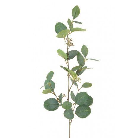 Eucalyptus Spray W/Berries